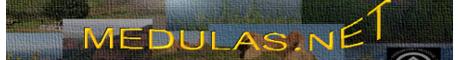 Medulas.com